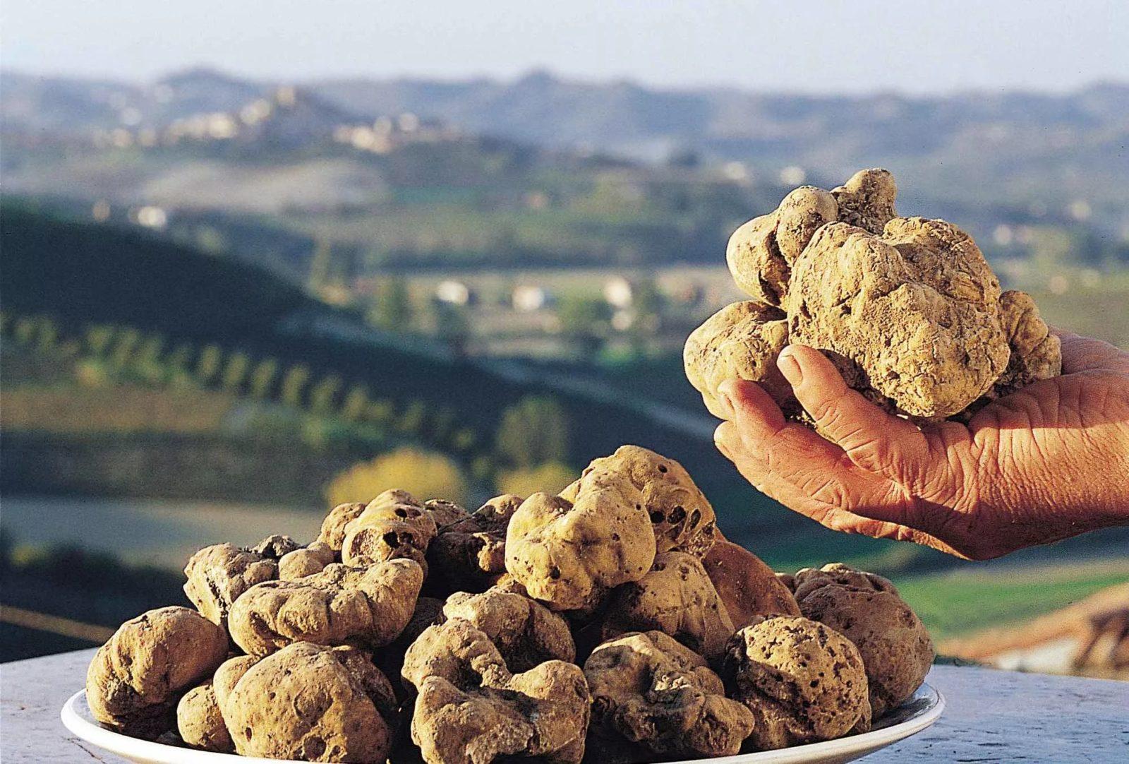 .jpg - Интересные факты о самой дорогой еде в мире