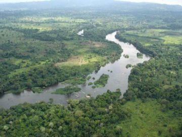 11 интересных фактов о реке Нигер
