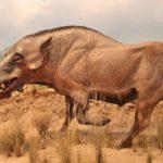 25 фактов о вымерших животных