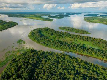 10 интересных фактов о реке Конго