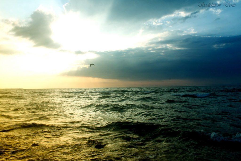 522211 1024x683 - 13 интересных фактов о Балтийском море