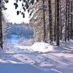Интересные факты о зиме