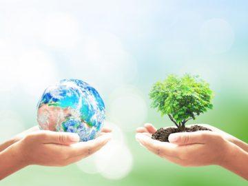 12 интересных фактов об экологии